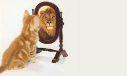 L'importanza della prova sociale per la nostra autostima