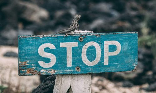 6 errori da non commettere sui social media