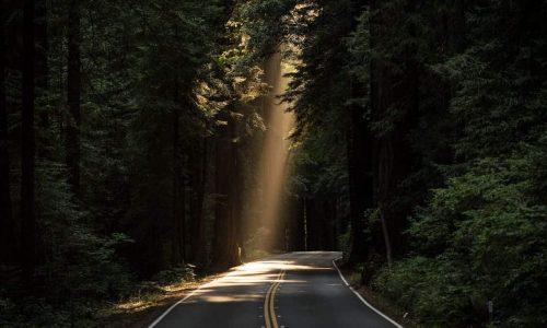 Strada oltre emergenza verso futuro